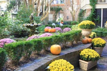 Copy fall with mums and pumpkins