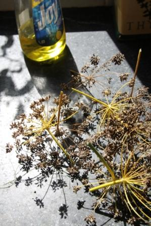 Copy fennel seed pods at sink