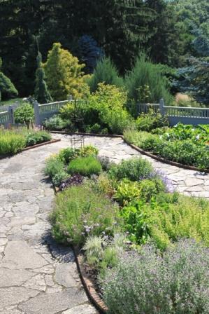 Herb Garden #1