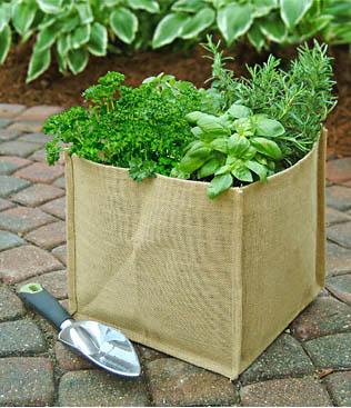 Burlap grow bag