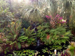 pond with railroad garden