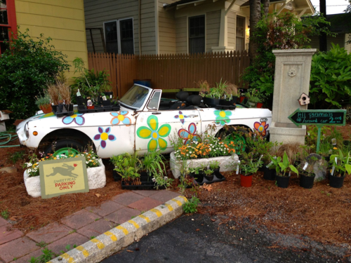 car planter MG