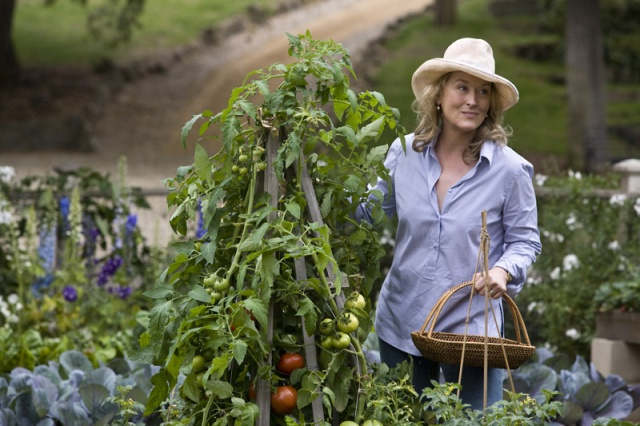 It's Complicated Garden with Meryl Streep