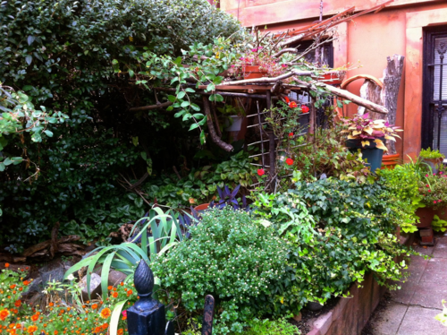 Rustic courtyard in Park Slope, brooklyn