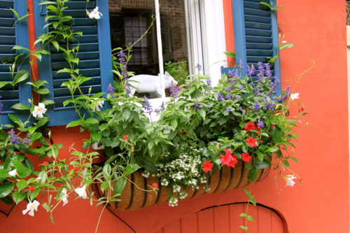 terra cotta color home historic Charleston