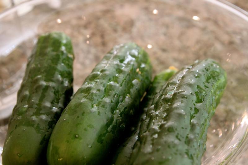 'Marketmore' cucumbers