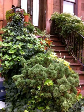 Brownstone garden Park Slope Brooklyn