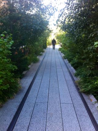 Leafy path through High Line, NYC